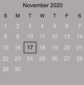 2020 November.png