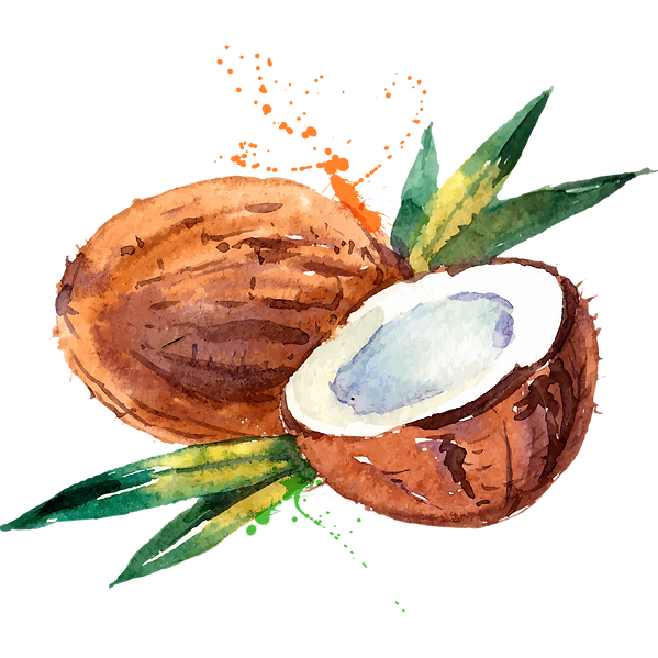pngegg (1).png