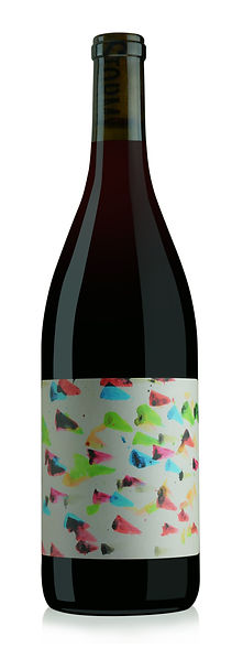 Storm.Gamay.2019.HiRes.jpg