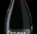 storm_WEBONLY-5.jpg