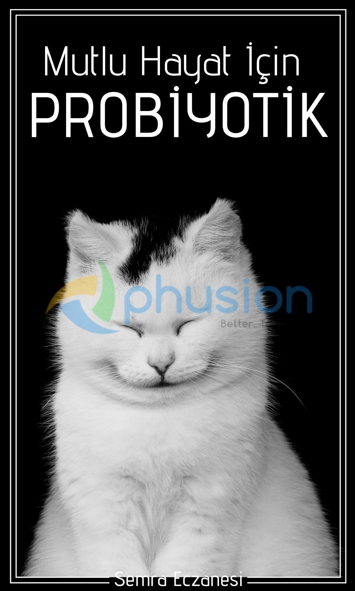 bağırsak sağlığı için probiyotik