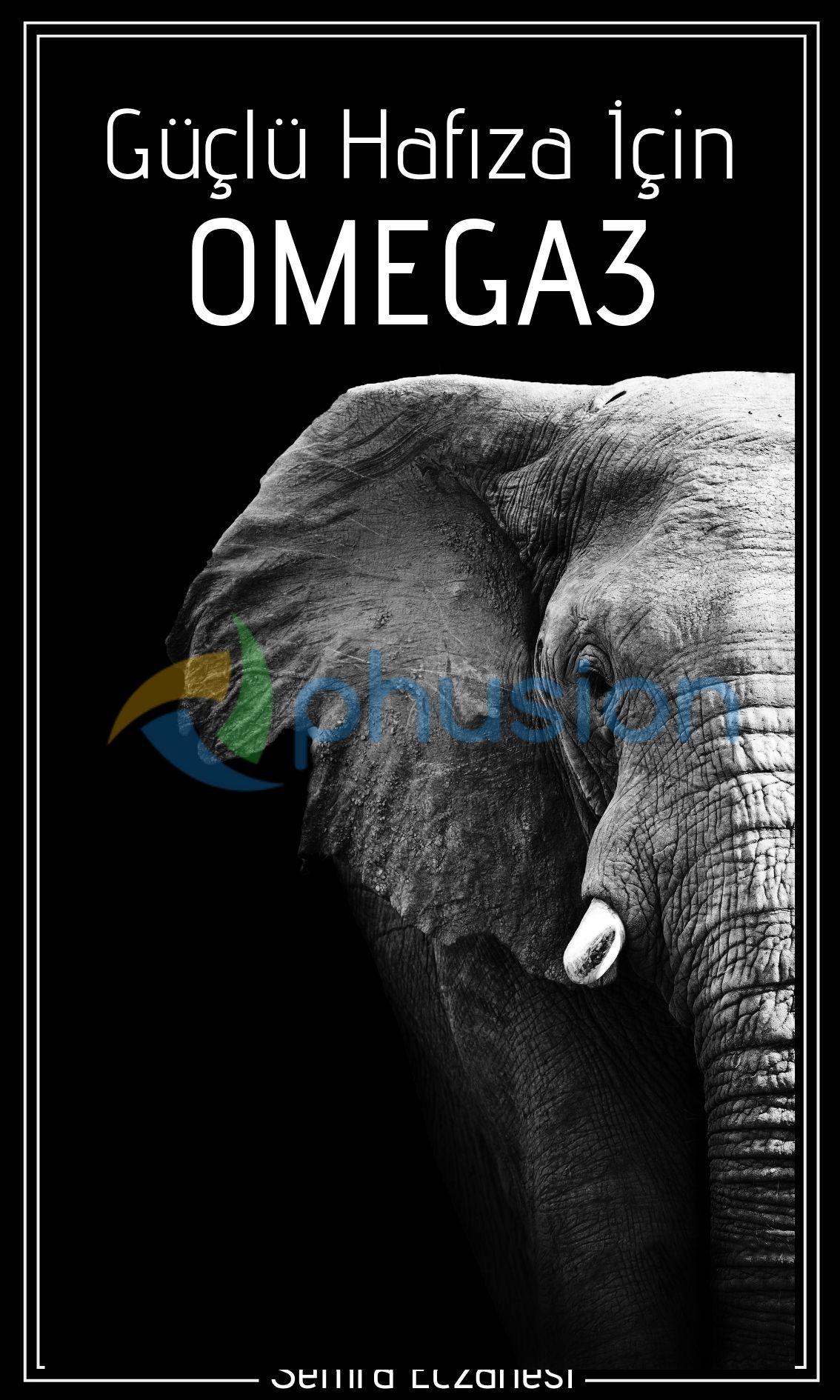 hafıza için omega3