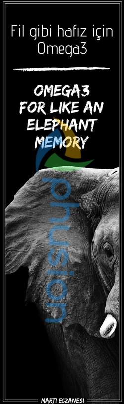 fil gibi hafıza omega3 ingilizce içerik