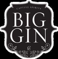 Big-Gin-LOGO.png