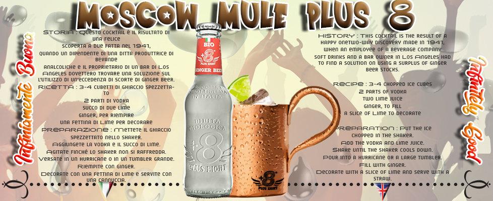 gin plusMOSCOW SITO PAGINA INIZIALE.jpg