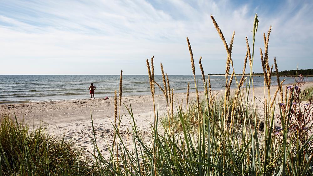 Sudersand, Gotland. Vass, strand och hav.