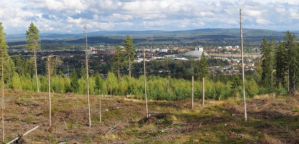 Utsikt över Borlänge i Dalarna
