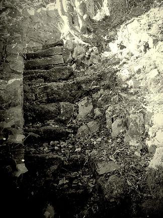 stone steps 3.jpg