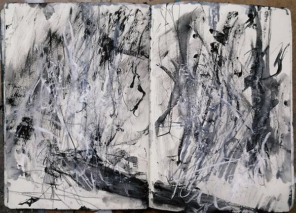 J Kerr, Harridge Wood and stream, sketchbook study