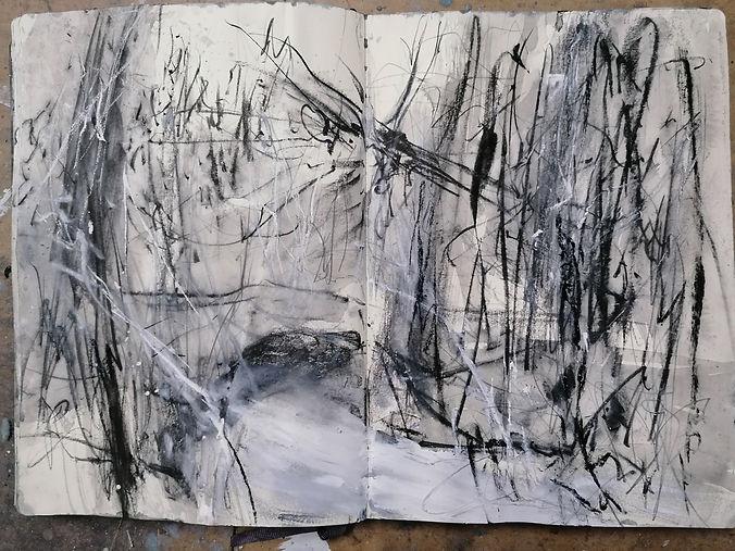 J Kerr Sketchbook study, Harridge Woods stream