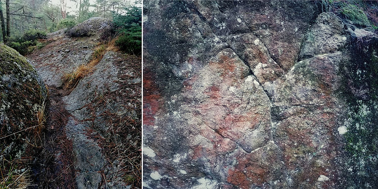 rock pathway and face.jpg