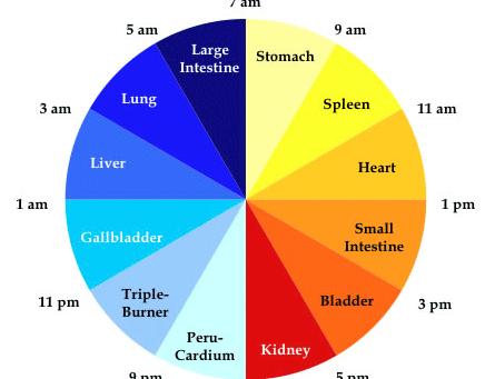 Body Clock: Eastern Medicine Wisdom of Daily Rhythms