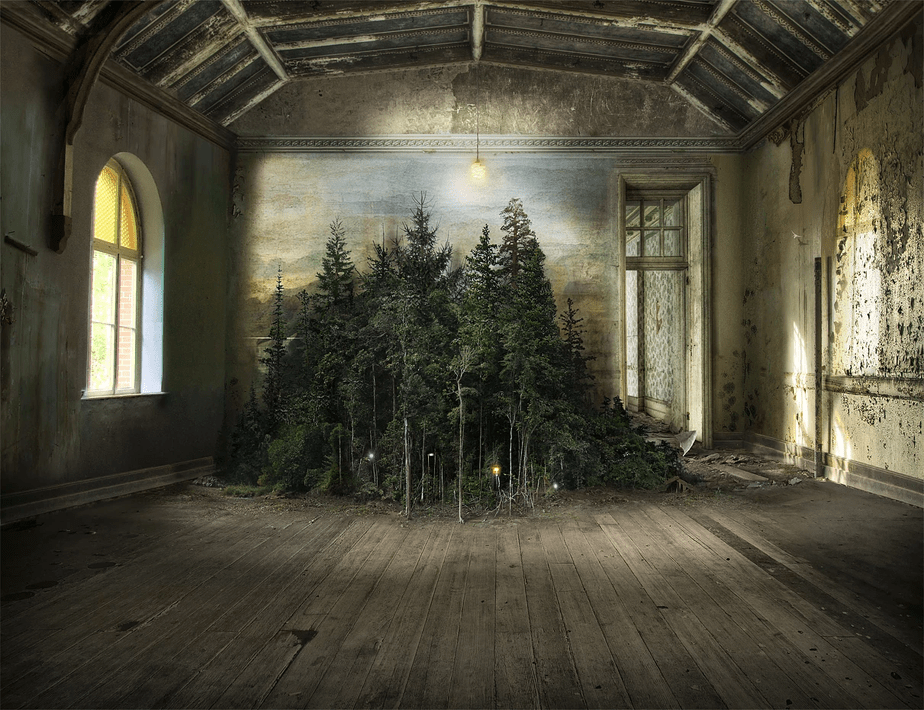 a photoshop image of forest inside an old house