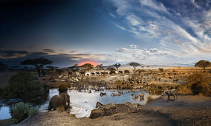 day to night composite photo of the Serengeti in Tanzania