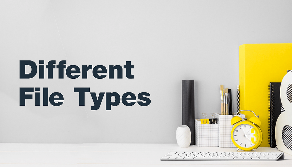 The Different Types of Files and How to Use Them