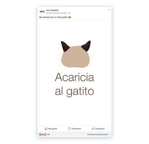Lindo gatito en Facebook