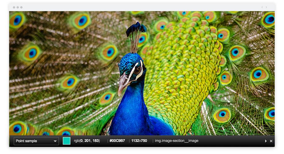 写真家におススメの拡張機能のcolorzillaのスクリーンショット
