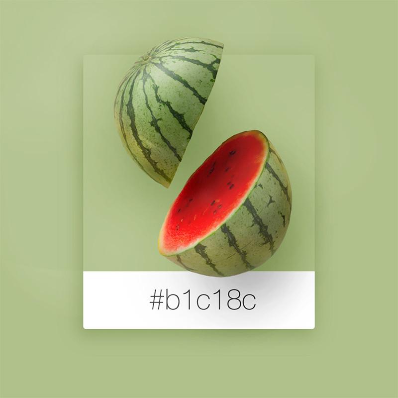 Wix Pinterest color inspiration: watermelon