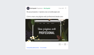 Por qué usar Google-Plus