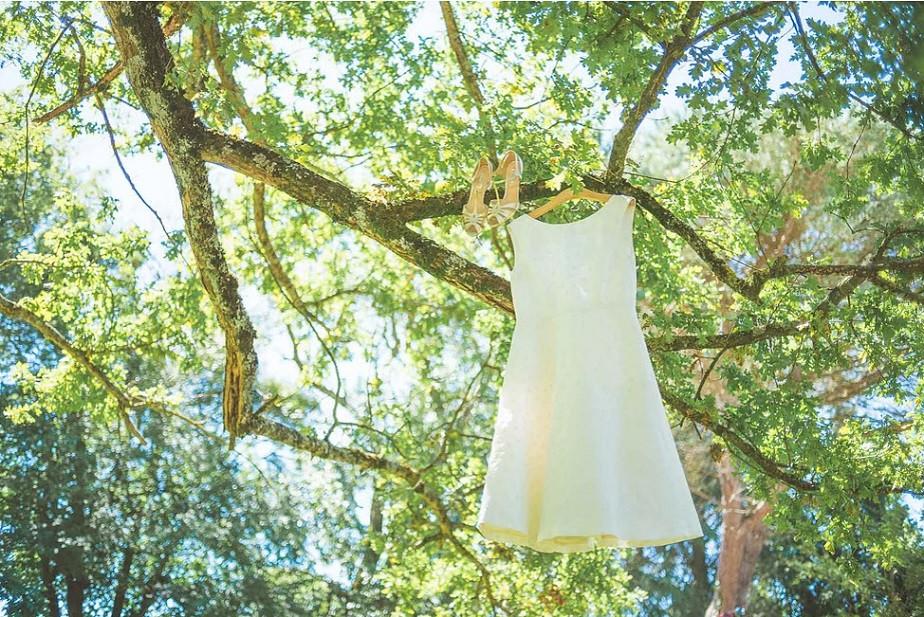 Wedding dress hung on a tree by Wix photographer David Rochas
