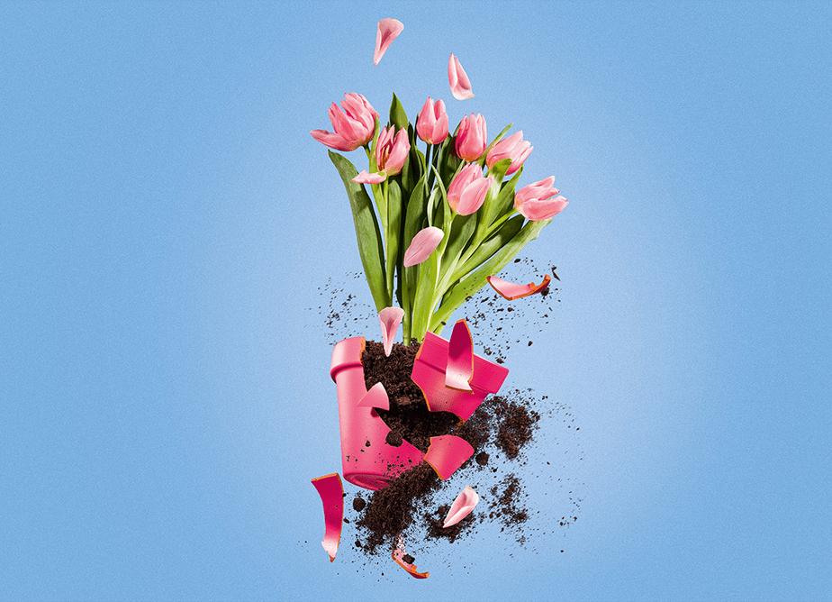 flower pot exploding mid-air
