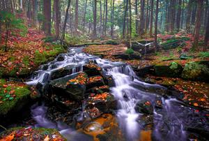 Parque Adirondack, Estados Unidos por Jonathan Zaharek