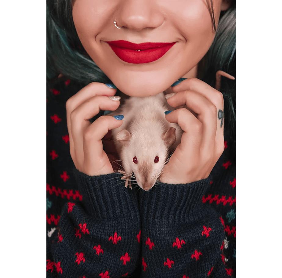 Wix Pet photography by Javier Retales Botijero
