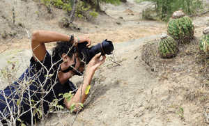 写真家, 撮影