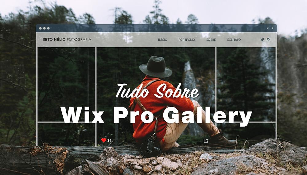 7 Boas Razões para Você Começar a Usar o Wix Pro Gallery