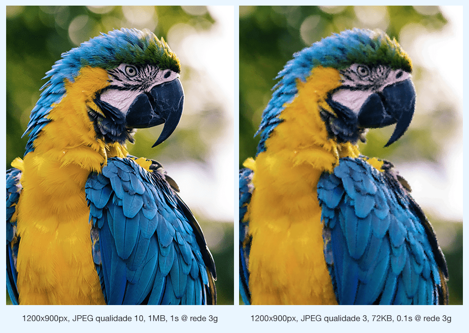 Como Otimizar Imagens para Seu Site: Compressão JPEG