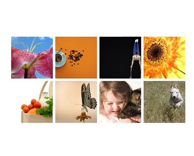 Website Style Guide - photographs