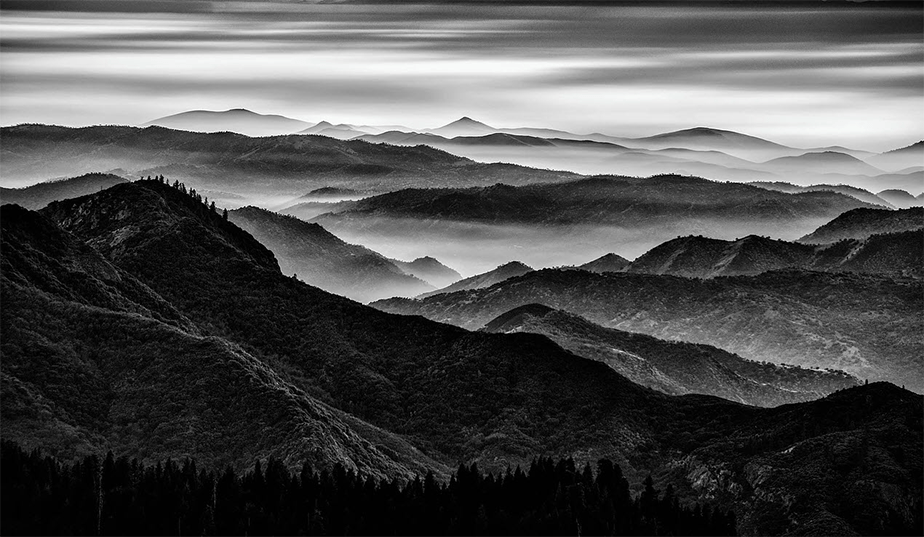 black and white landscape of forest mountains covered by fog
