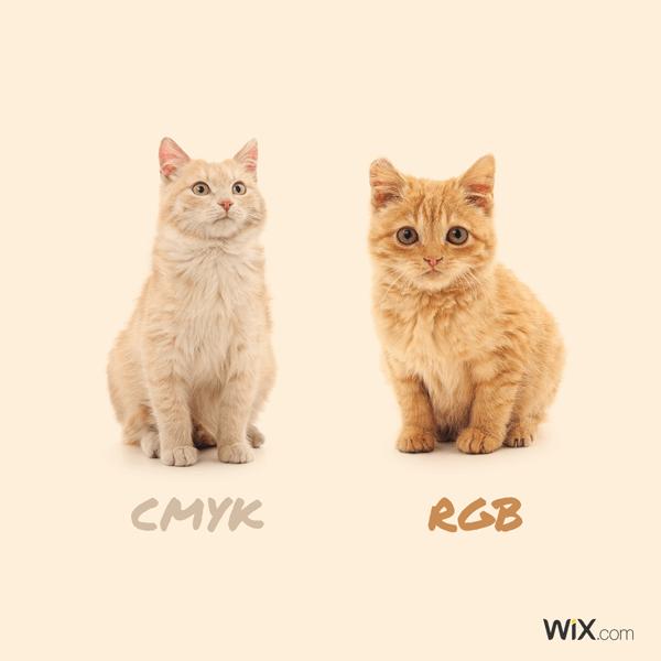 Teoría del color: rgb vs cmyk