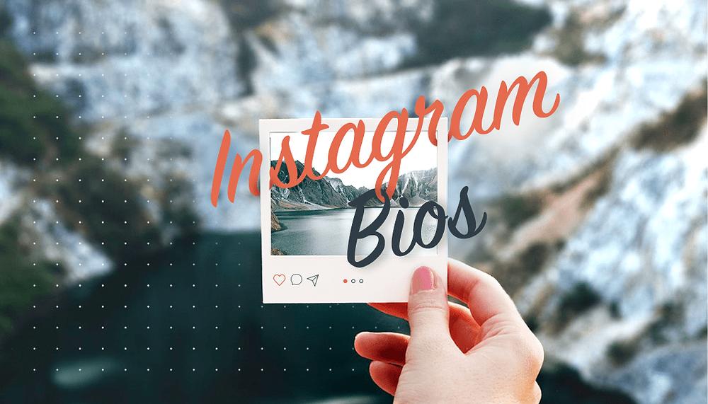 Funny Instagram Bios that Will Brighten Your Day