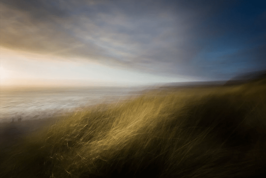 long exposure of tall grass on windy day