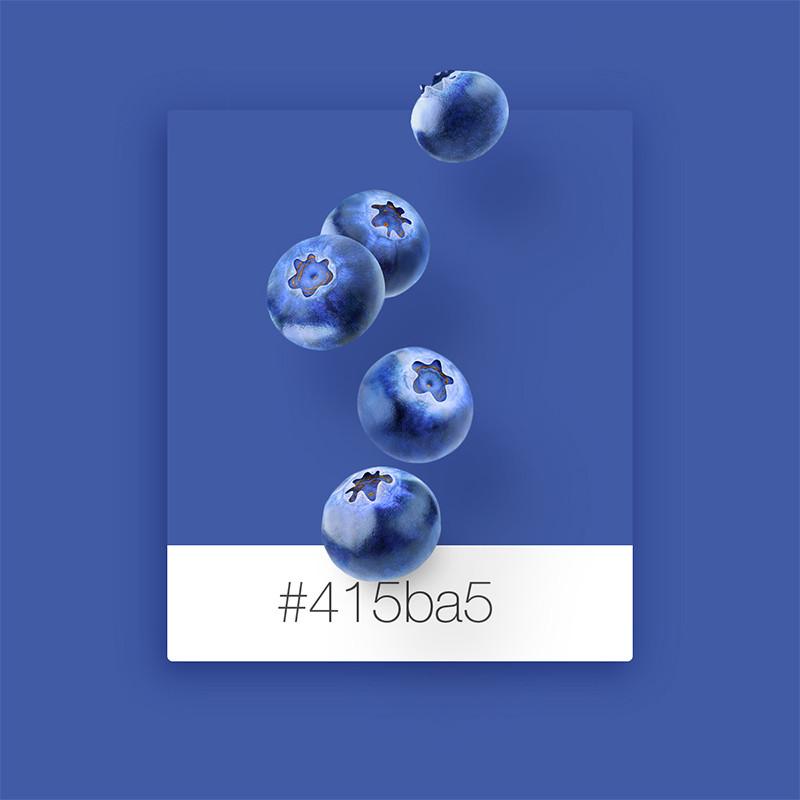 Wix Pinterest color inspiration: blueberries