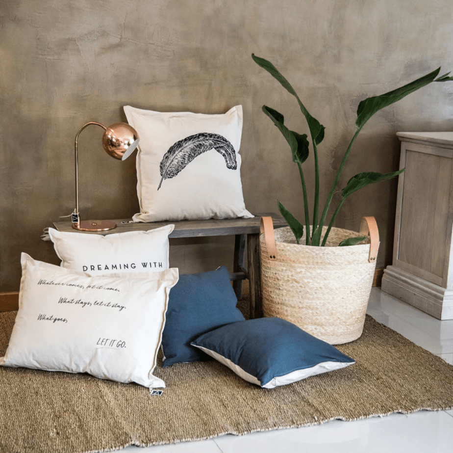 pillow showcase and plant
