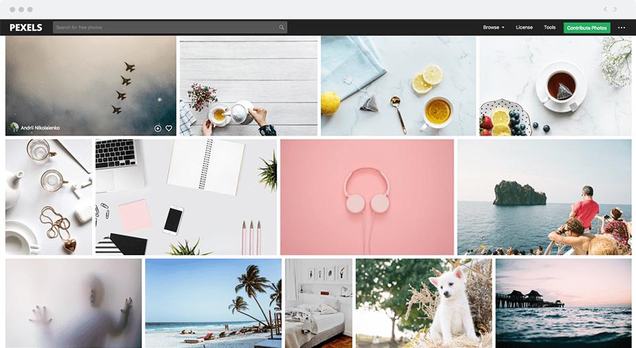 Wix blogger tools - Pexels