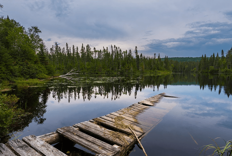 broken pier submerged on a blue lake surrounded by green trees