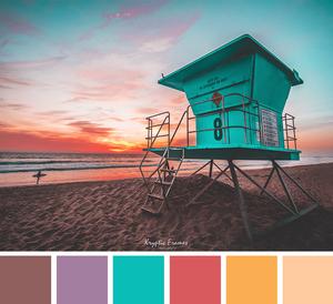 La guía para elegir el mejor esquema de color para tu página web