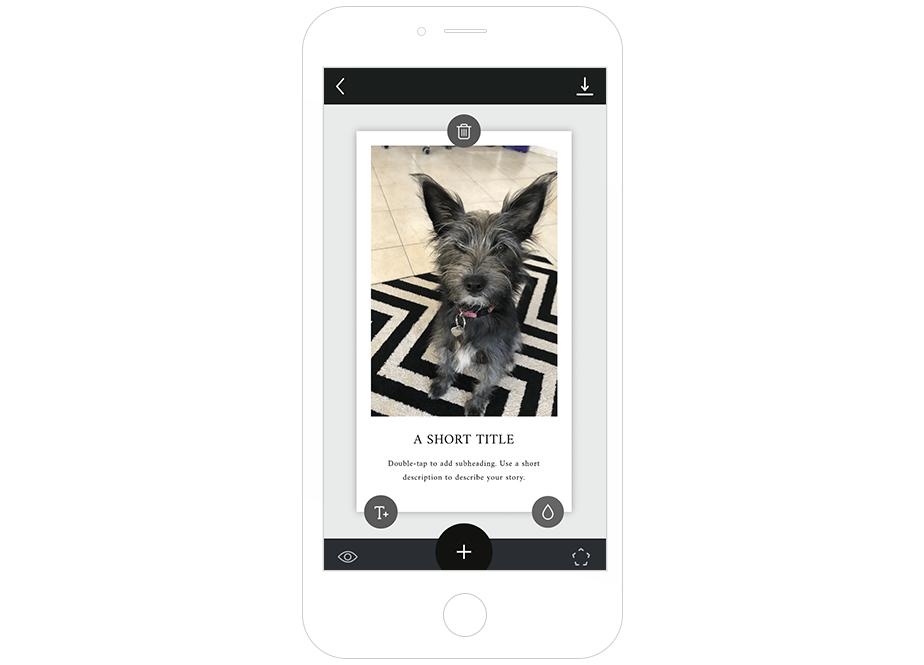 Melhores Ferramentas de Instagram para seu Negócio: Unfold