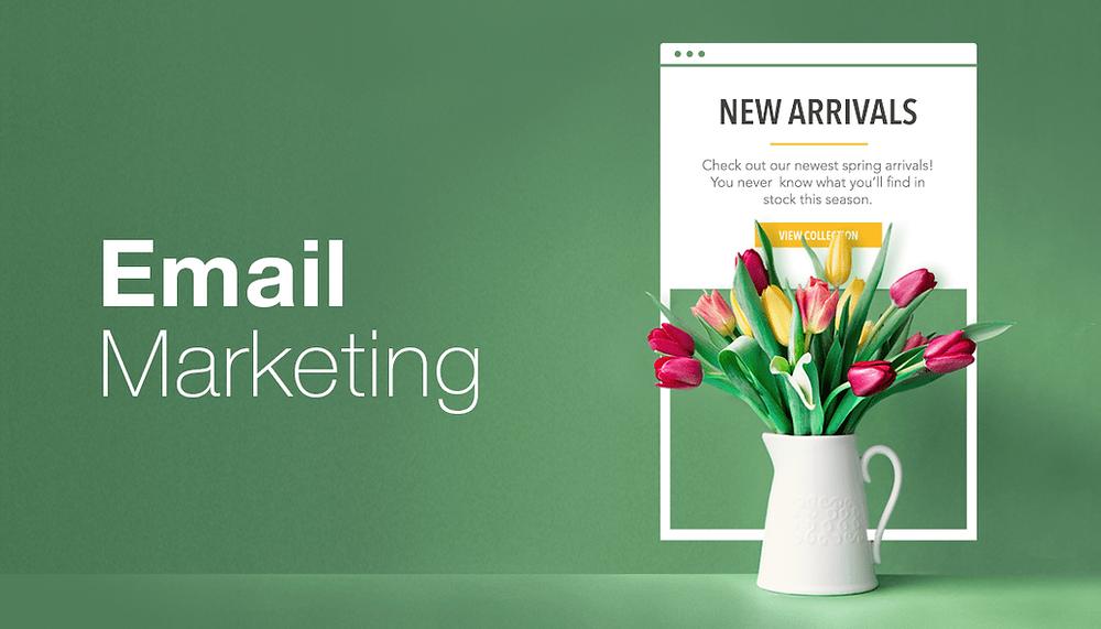 10 Ways to Master Email Marketing Like a Pro