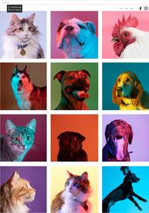 Wix Site de Creature Portraits