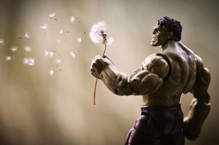 Mitchel Wu Photography, The Hulk