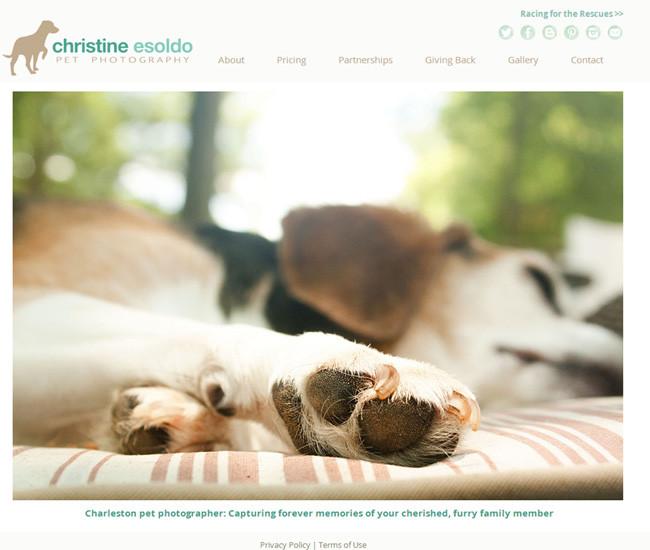 Christine Esoldo Pet Photography >>