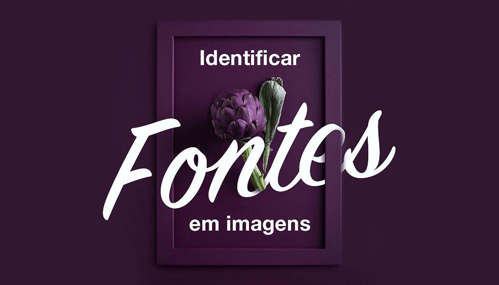 Como Identificar Fontes em Imagem e Fazer Upload para Seu Site