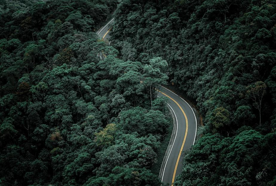 Foto perteneciente a la página web de fotografía Wix de Felipe Silva