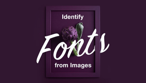 How to find fonts from images