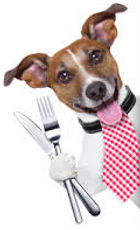 vet greystones vet blacklion vets food hills science diet royal canin dog cat pet overweight