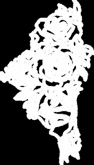 piirretty kukkakuva